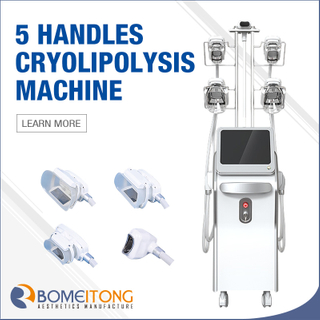 Cryolipolysis Freeze Fat Beauty Machine with 5 Work Head