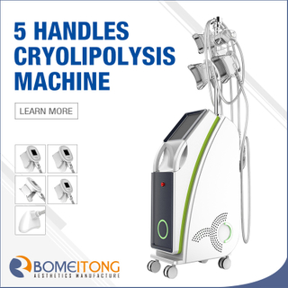 5 in 1 Cryolipolysis Fat Freezing Machine Price Newest